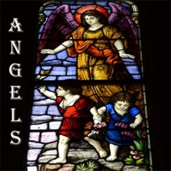 angels-what would you like to know about them